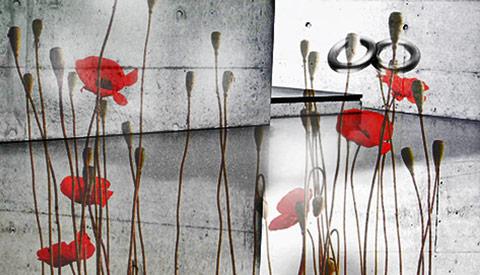 Foto-Design DEWO WERBEAGENTUR