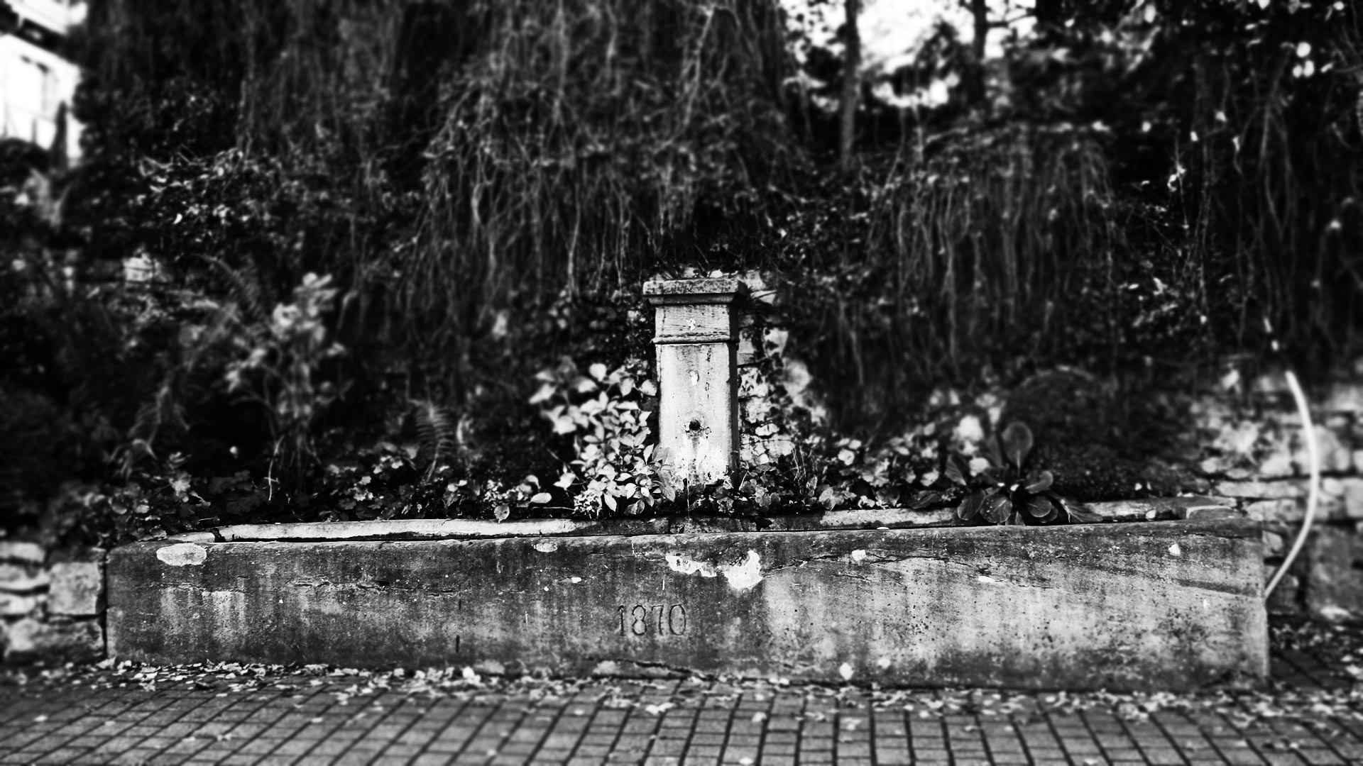 FOTOAUFNAHMEN FÜR EBRINGER BRUNNENWEG - Fotoschau DeWo Werbeagentur Gitti Scharfenberg #1